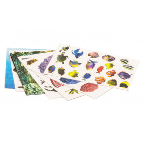 Woodland Scenics Theme Ocean Kit sp4242
