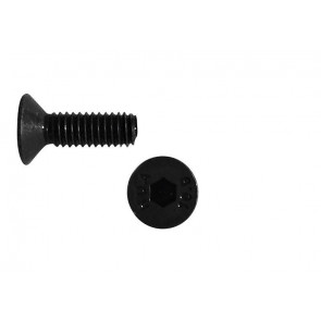 AT FHCSM2.5X10 (6pc) steel flat head (countersunk) cap screw metic